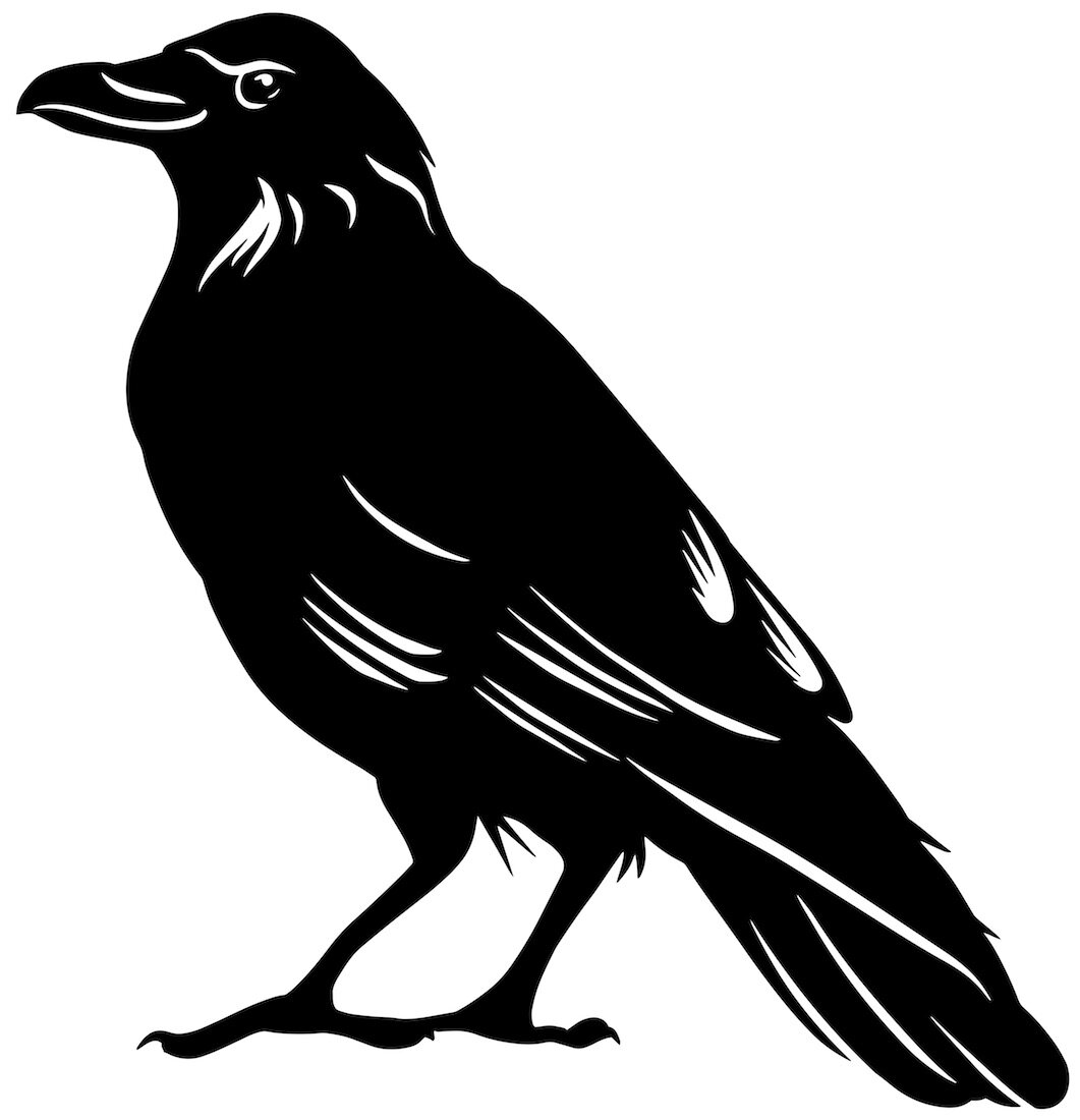 Alejandro Fernandez-crows_3.jpg