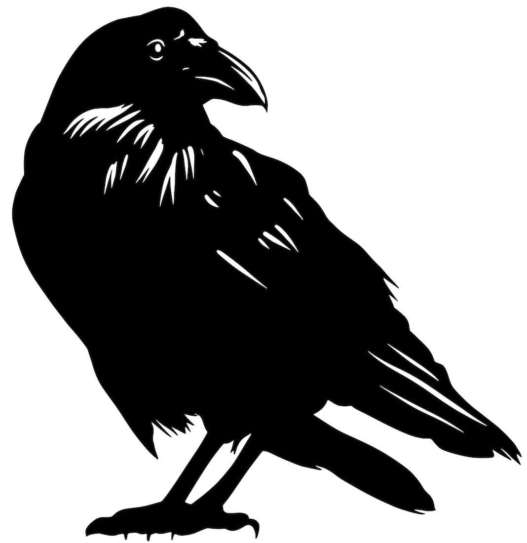 Alejandro Fernandez-crows_9.jpg