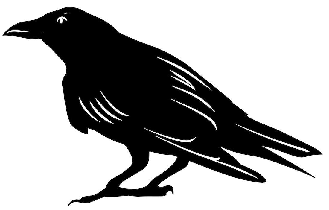 Alejandro Fernandez-crows_10.jpg