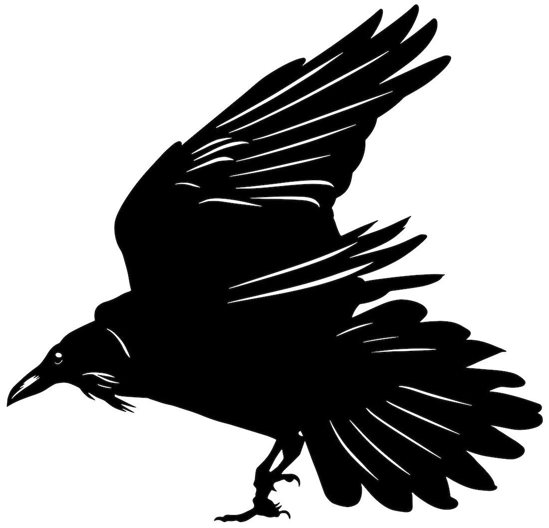 Alejandro Fernandez-crows_12.jpg