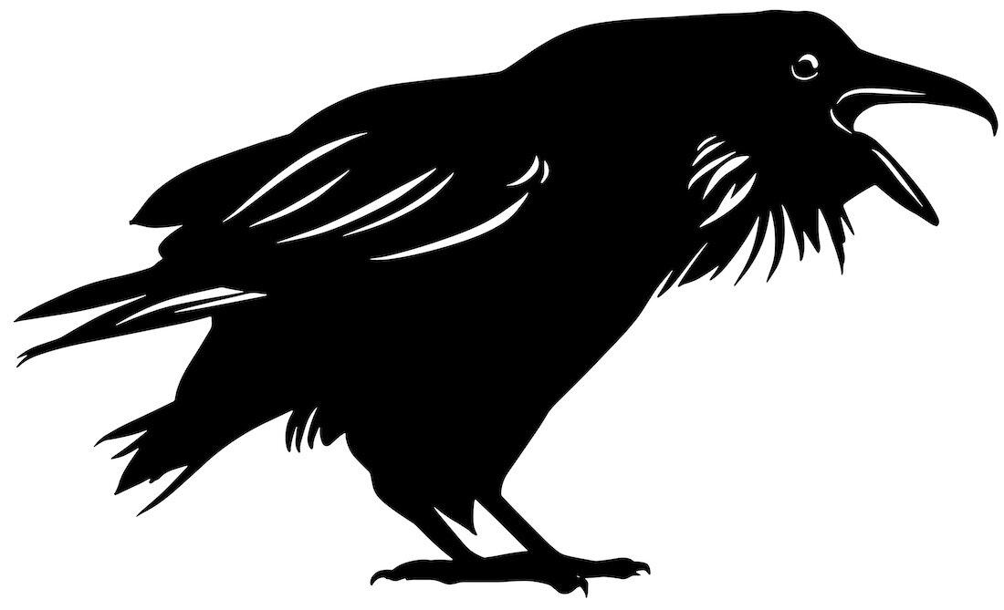 Alejandro Fernandez-crows_13.jpg