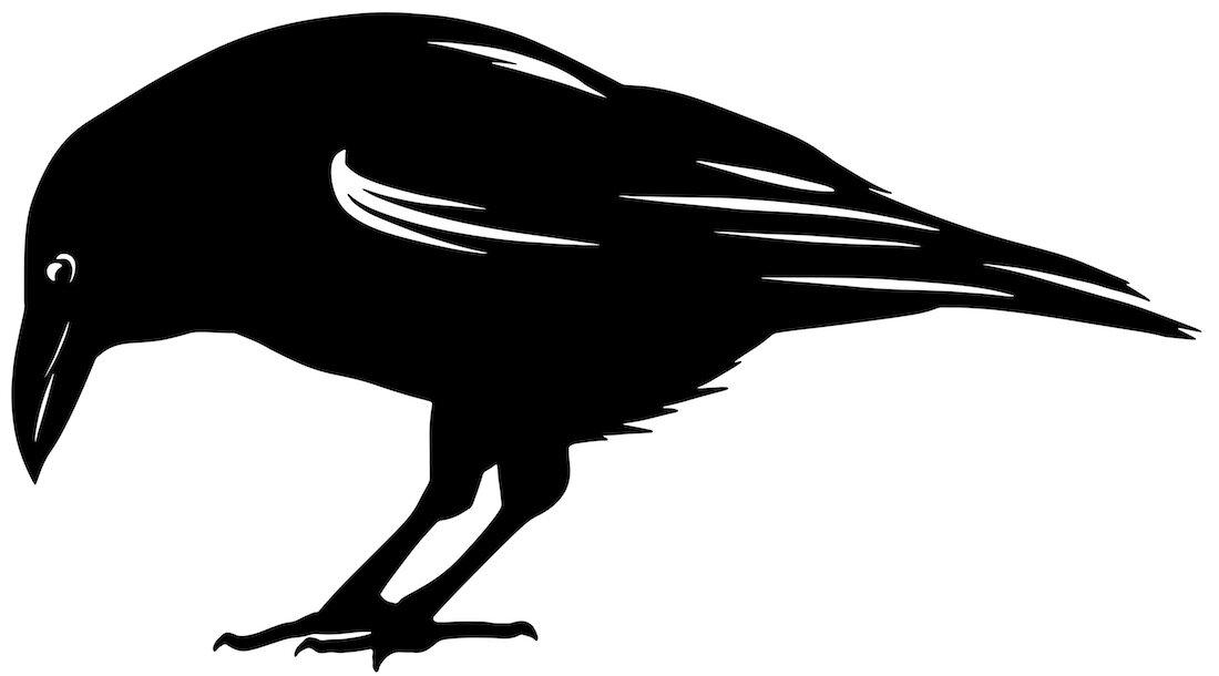 Alejandro Fernandez-crows_14.jpg