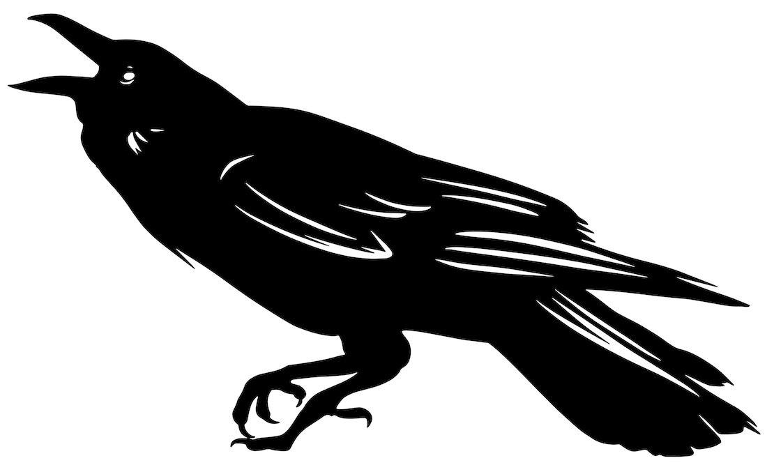 Alejandro Fernandez-crows_15.jpg