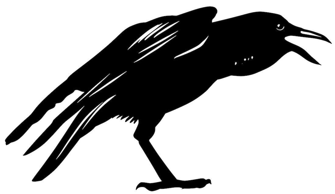 Alejandro Fernandez-crows_16.jpg