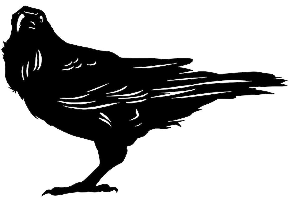 Alejandro Fernandez-crows_17.jpg