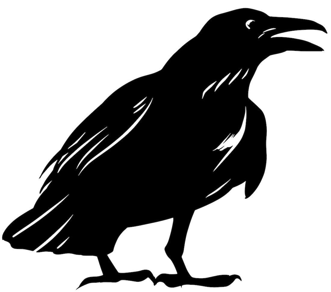 Alejandro Fernandez-crows_18.jpg