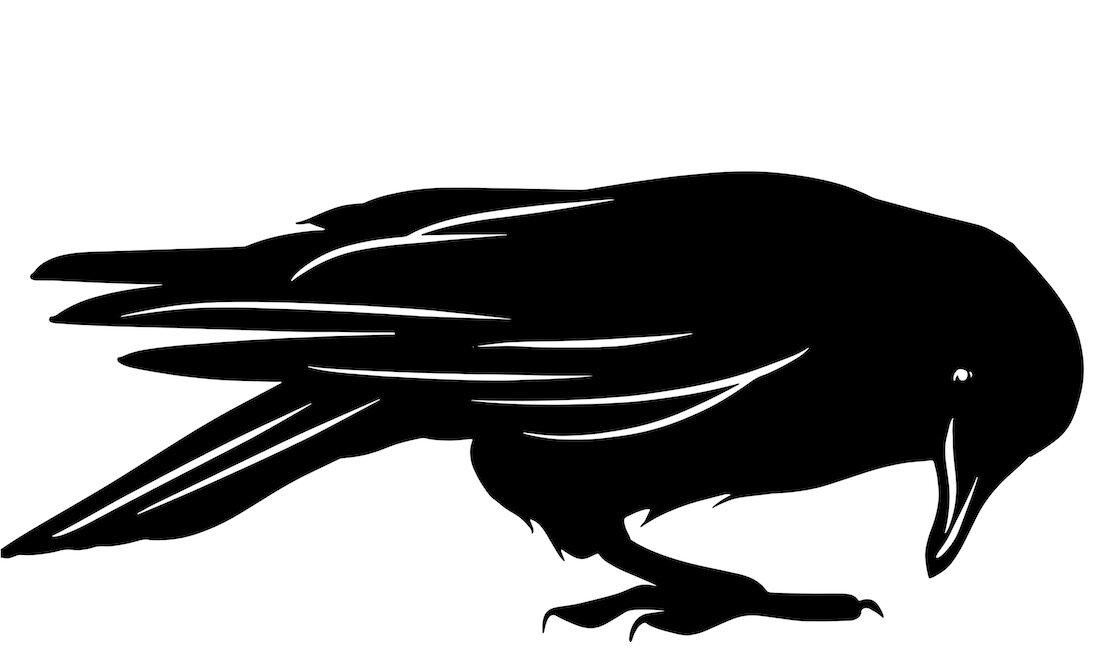 Alejandro Fernandez-crows_19.jpg