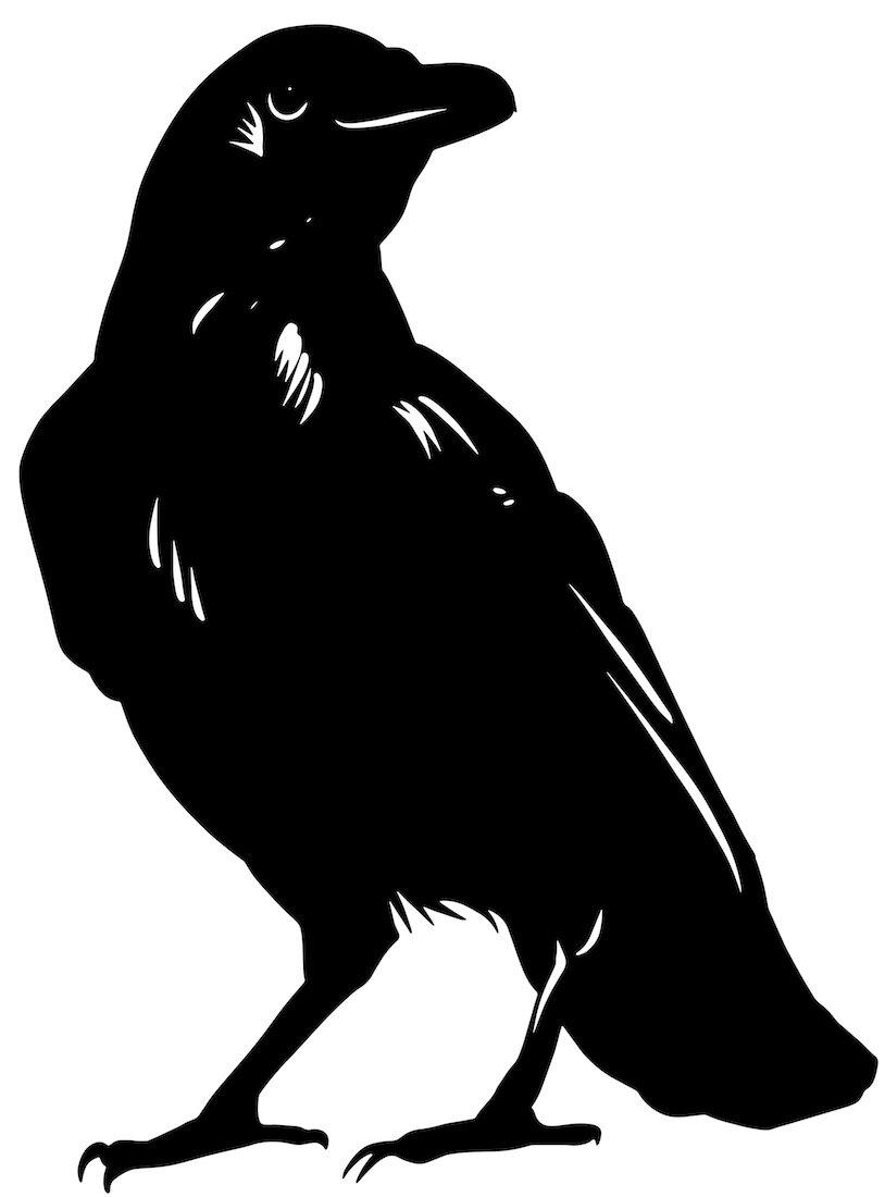 Alejandro Fernandez-crows_22.jpg