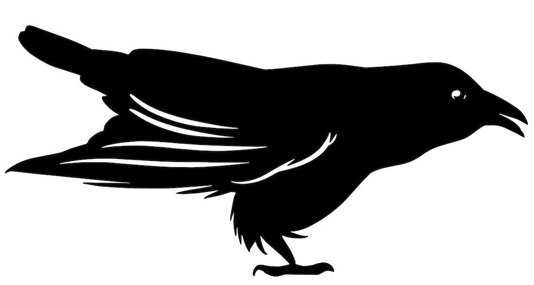 Alejandro Fernandez-crows_23.jpg