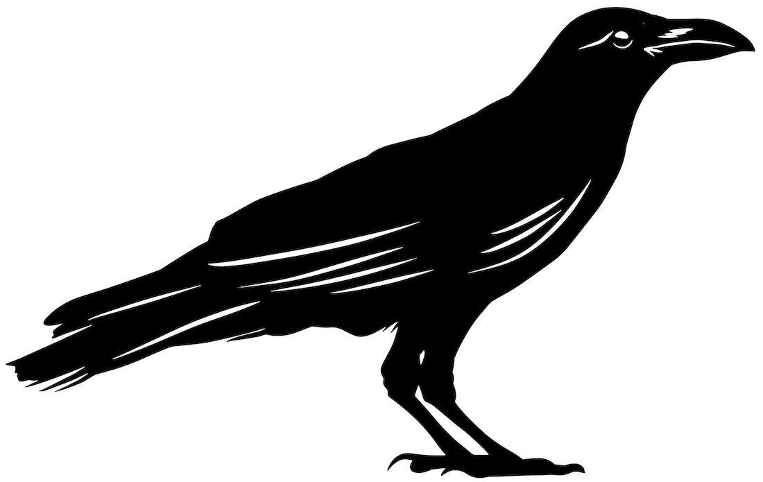 Alejandro Fernandez-crows_24.jpg