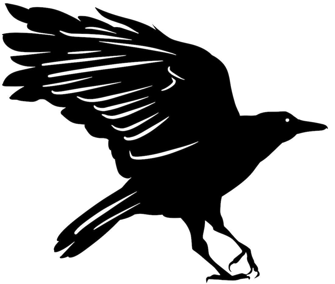 Alejandro Fernandez-crows_25.jpg