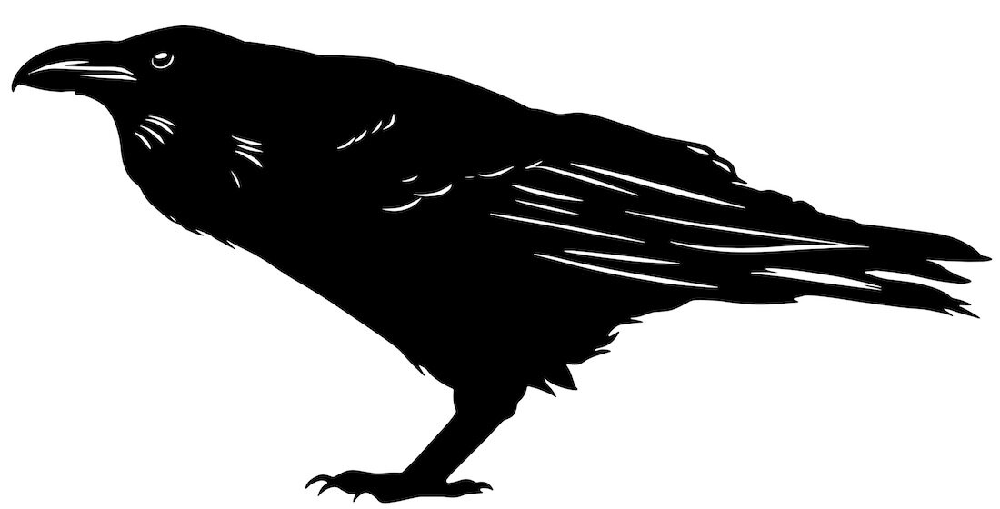 Alejandro Fernandez-crows_26.jpg