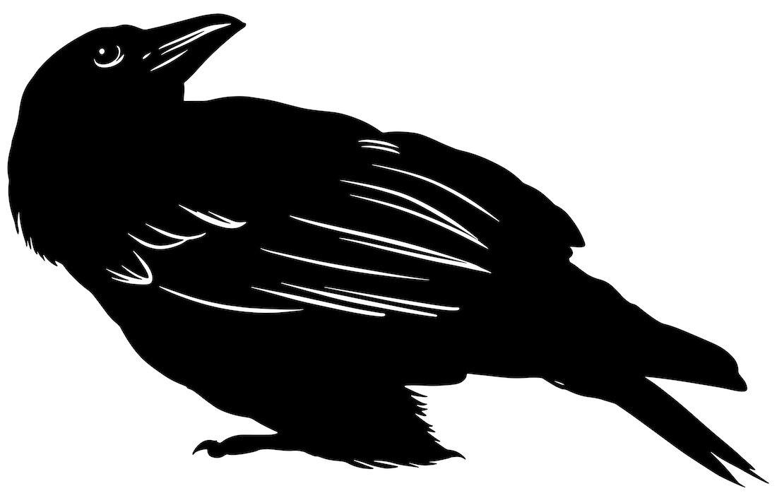 Alejandro Fernandez-crows_27.jpg