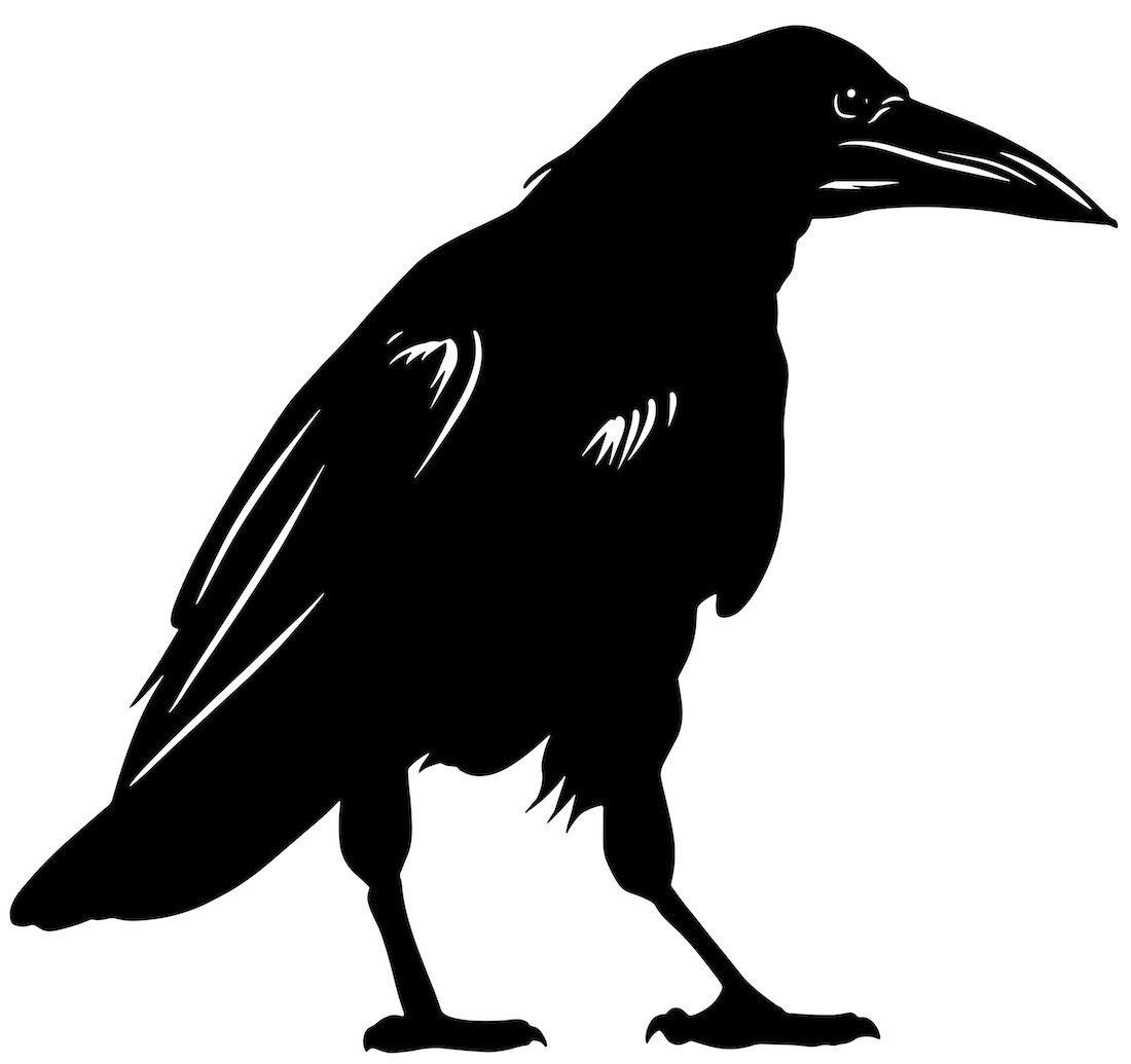 Alejandro Fernandez-crows_28.jpg