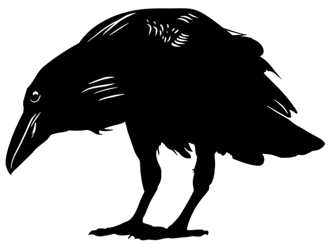 Alejandro Fernandez-crows_29.jpg