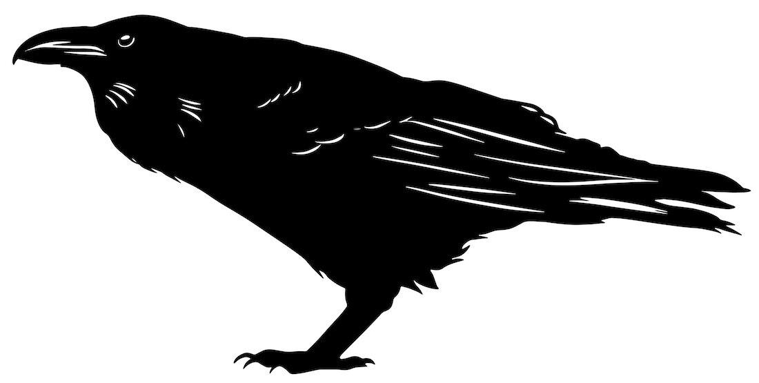 Alejandro Fernandez-crows_30.jpg