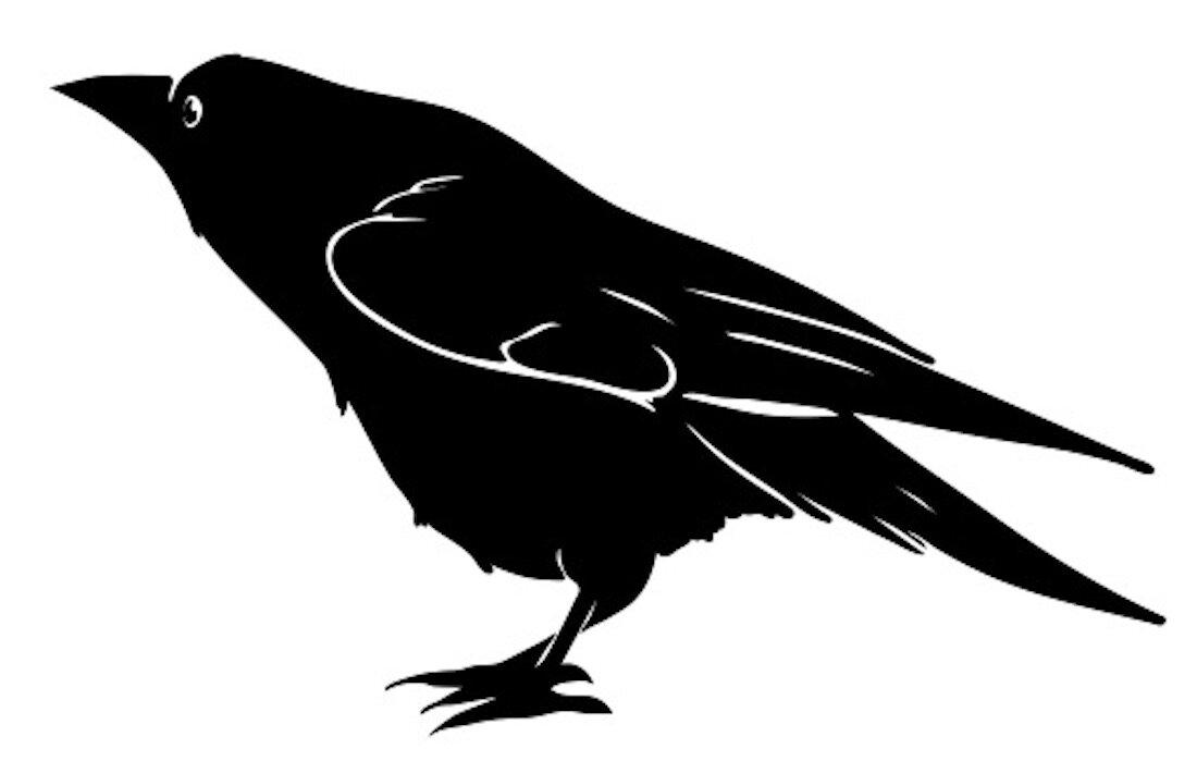 ColinHunt_Crow_01.jpg