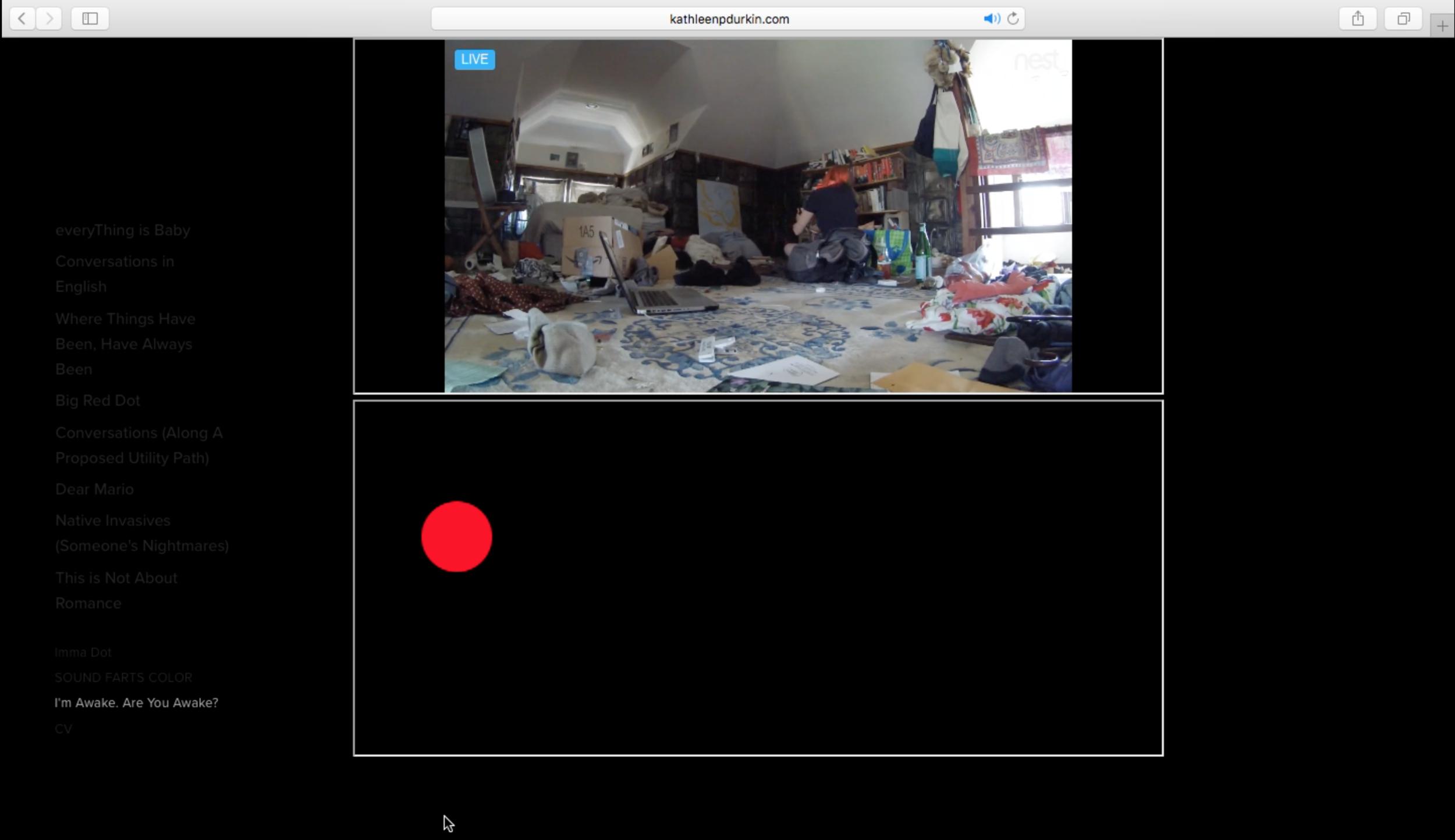 Screen Shot 2019-05-12 at 12.08.25 AM.png