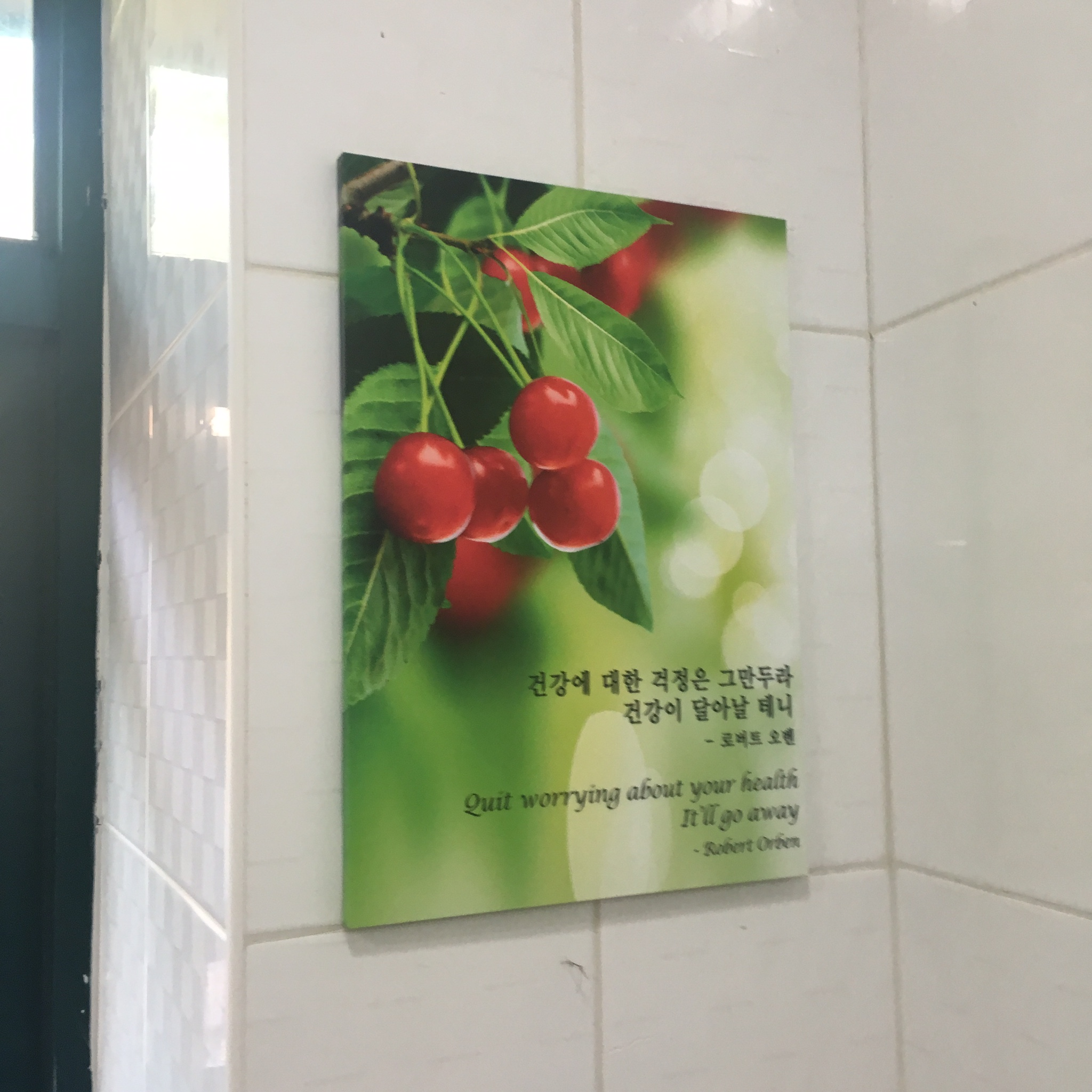Urinal wisdom in the DMZ