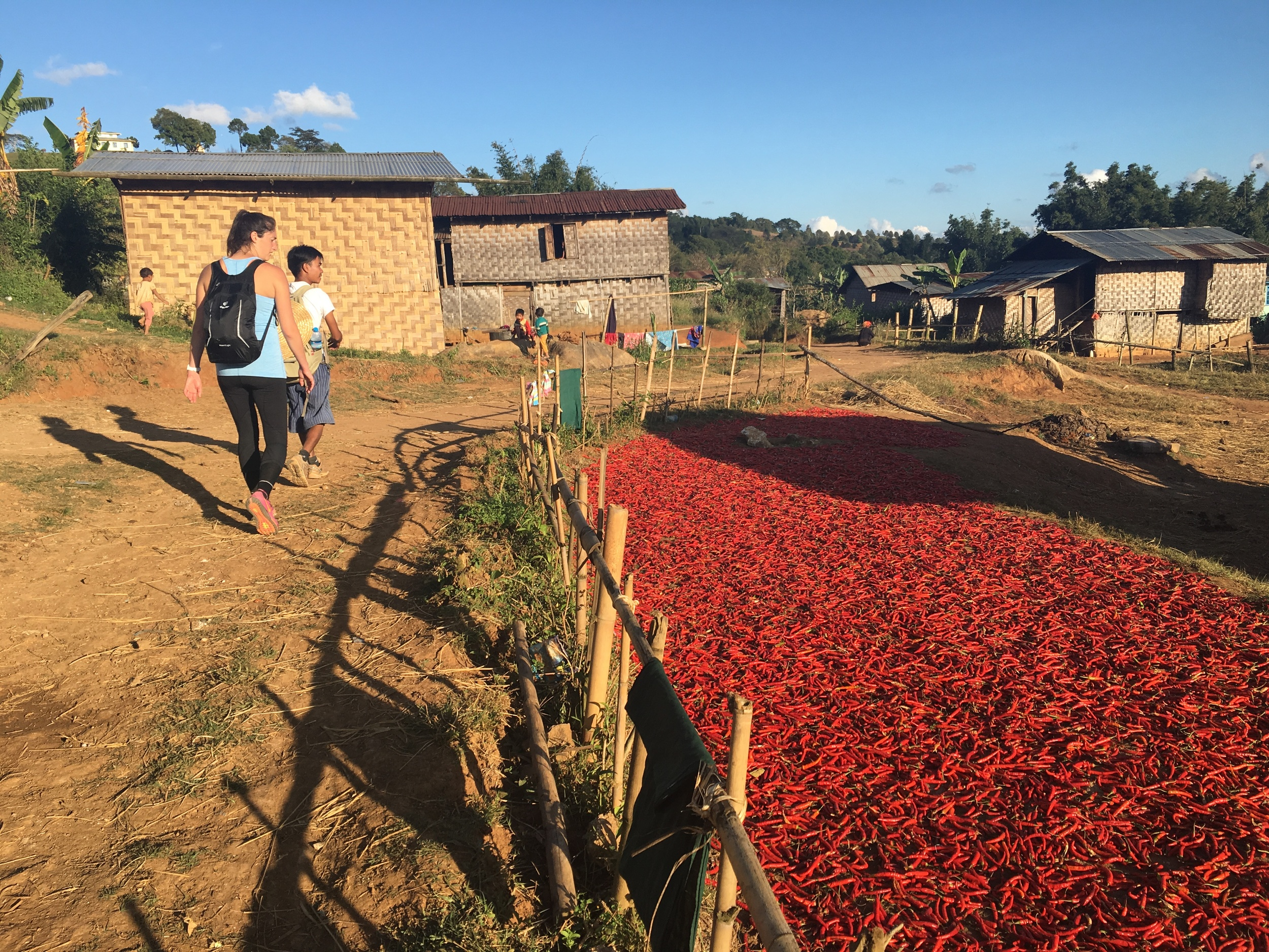 "Hot chilis laid out to dry in a Pa'O Village, nicknamed ""Chili Village"""