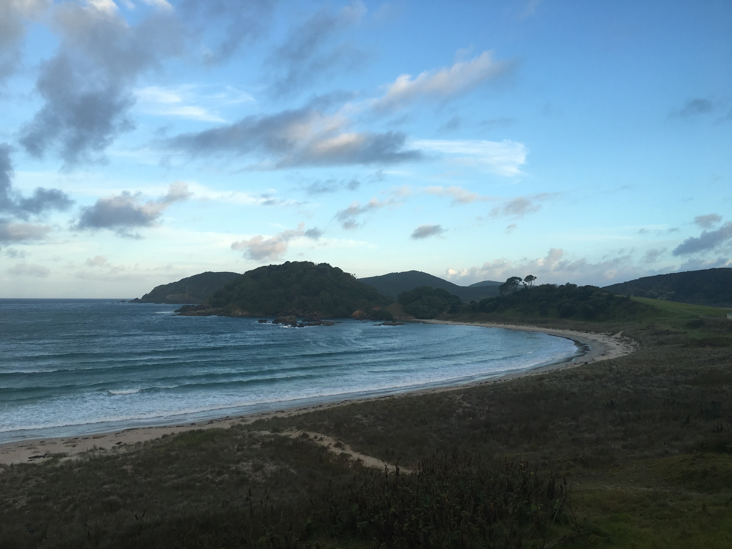 Karikari peninsula campsite