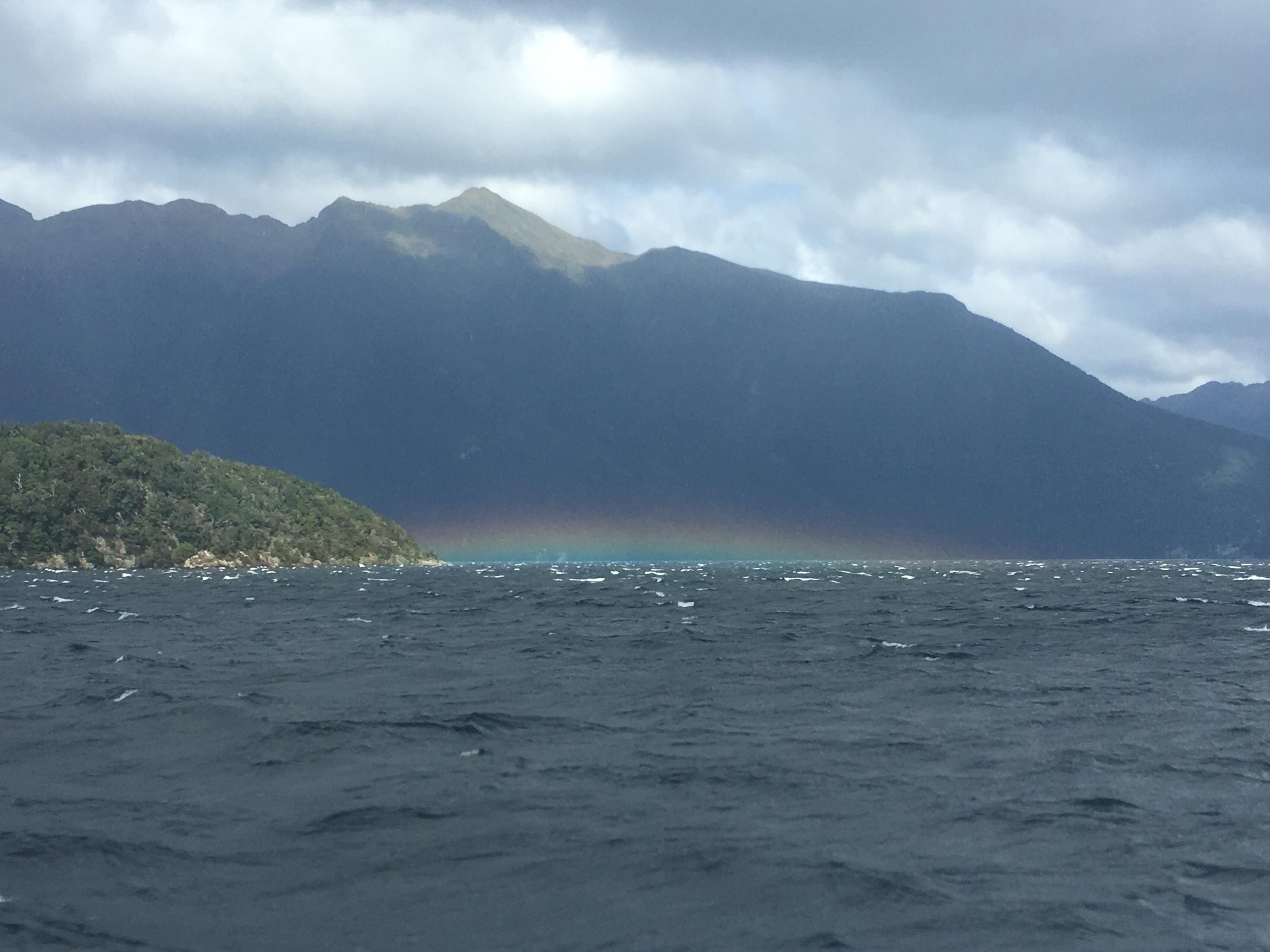 Hovering Rainbow