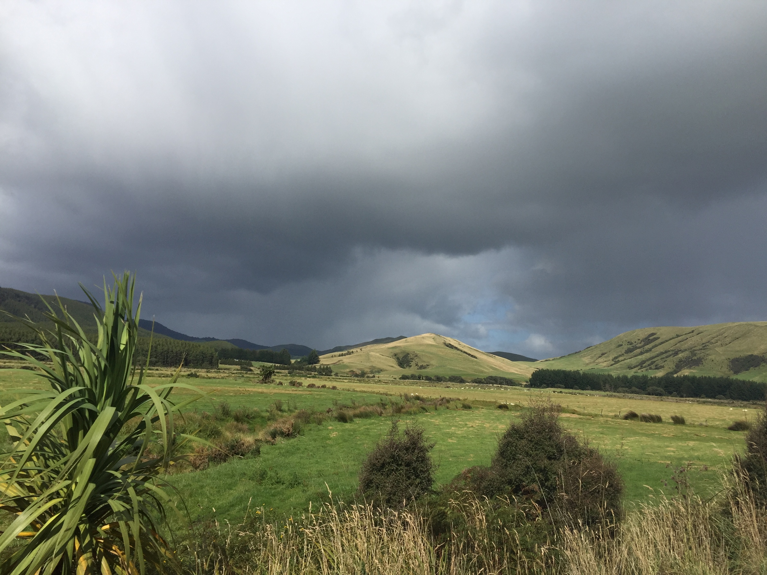 Stormy Southland