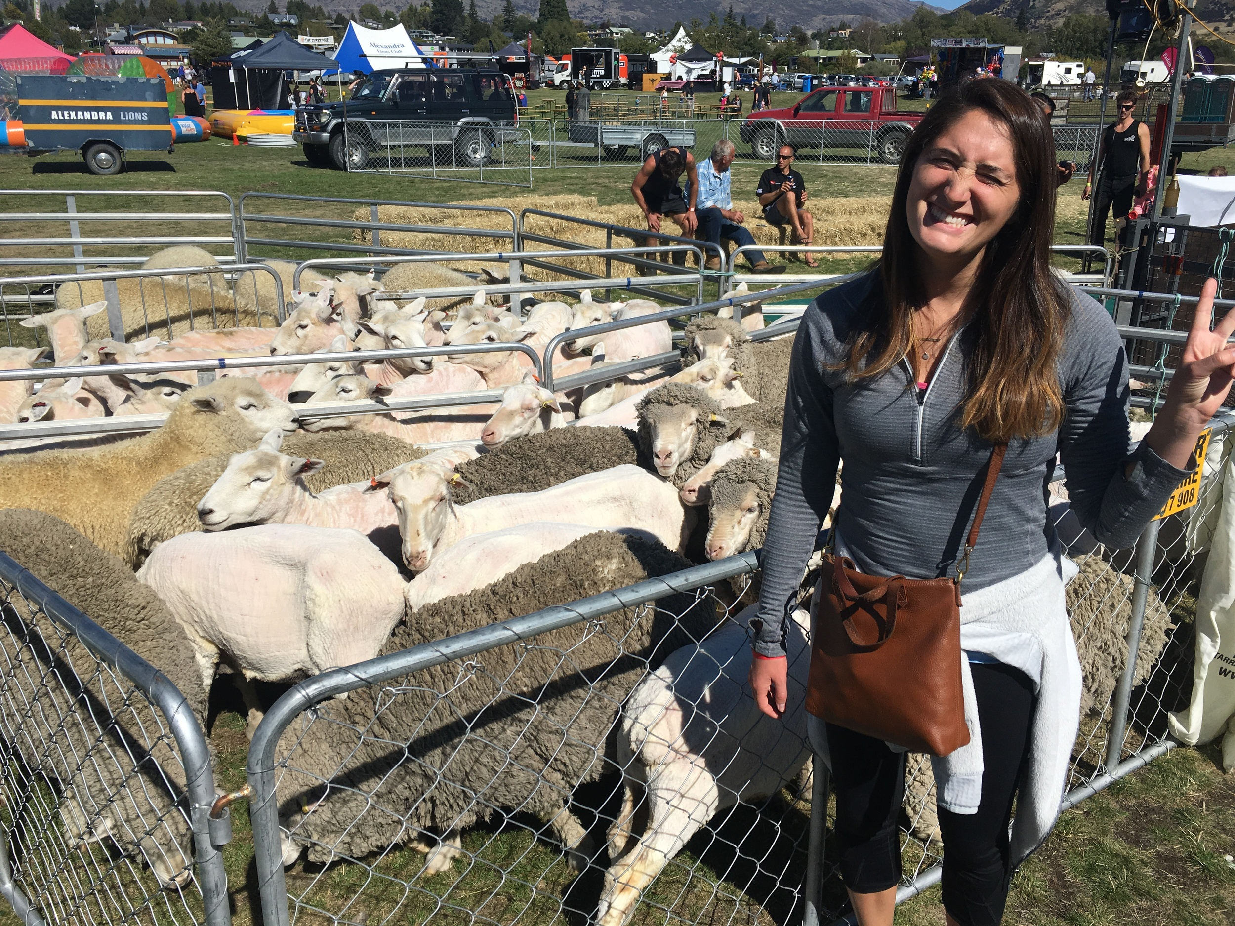 Sheep friends at the Wanaka Agricultural + Pastoral Show