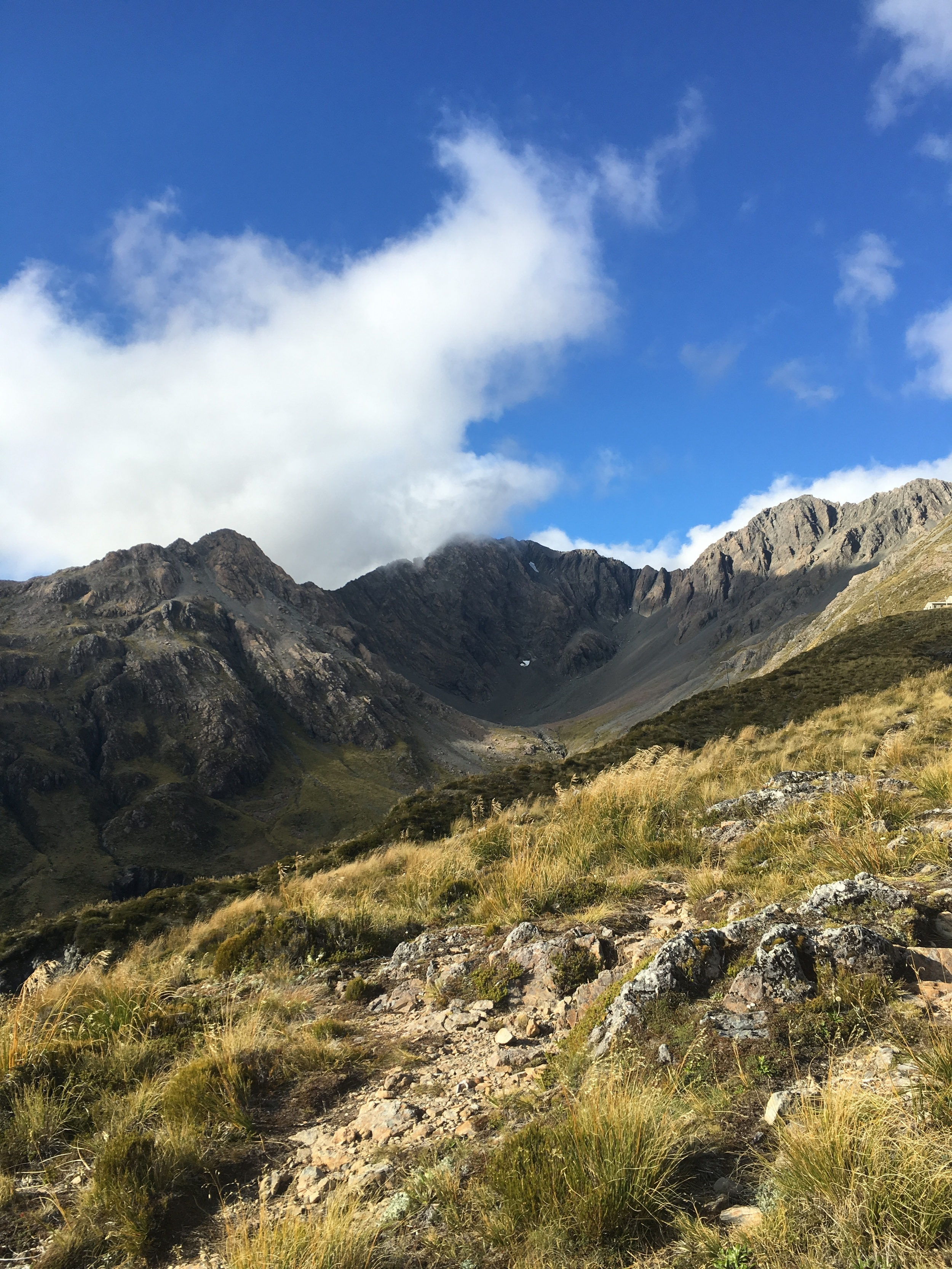 Temple Basin Hike in Arthur's Pass