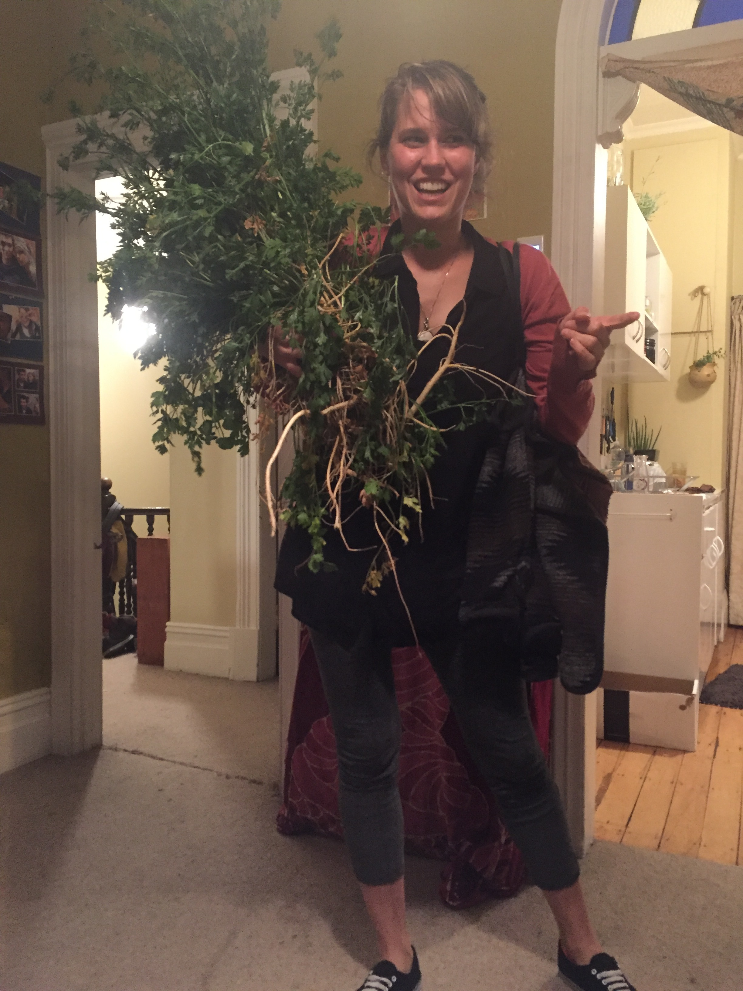 Annabeth brought a parsley tree home!