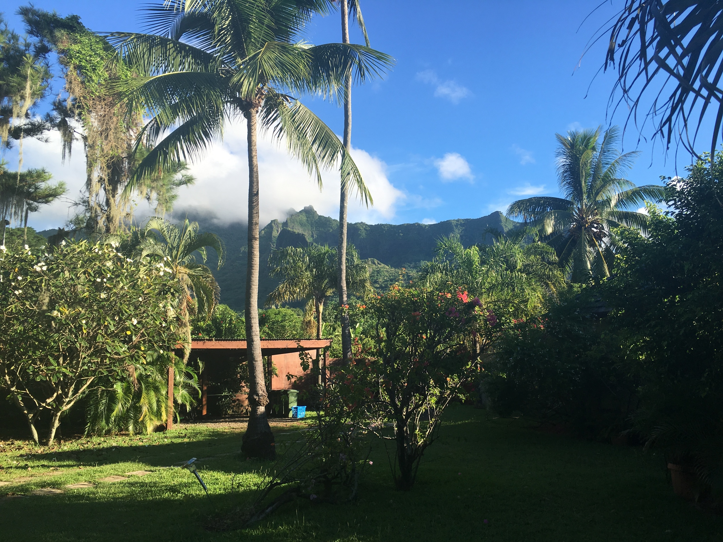 Our Moorea guesthouse