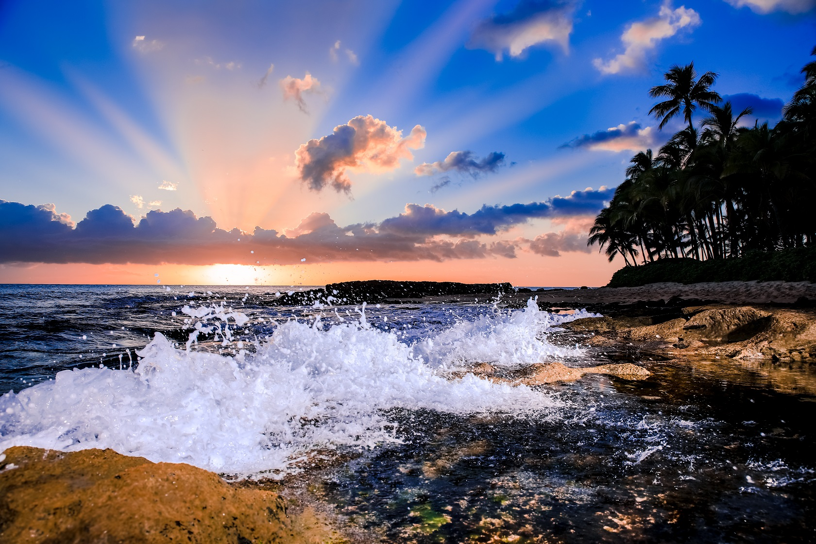 sunset over hawaii ocean palm trees crashing waves fine art
