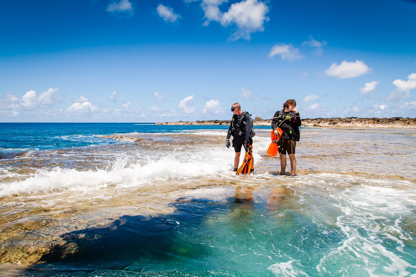 Dive For Life, scuba diving charity event at Shark's Cove on Oahu's North Shore