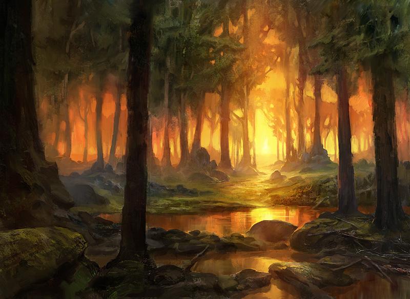 forest_sm.jpg