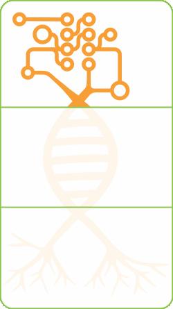 Logo_Circuit_Web_RGB.png