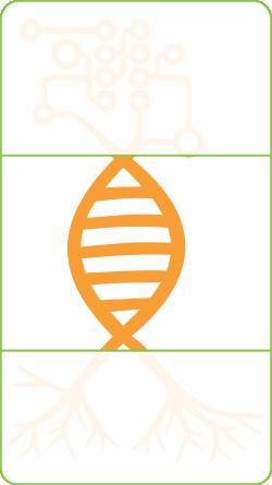 Logo_DNA_Web_RGB.png