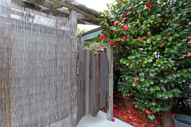 Entrance to the outdoor shower