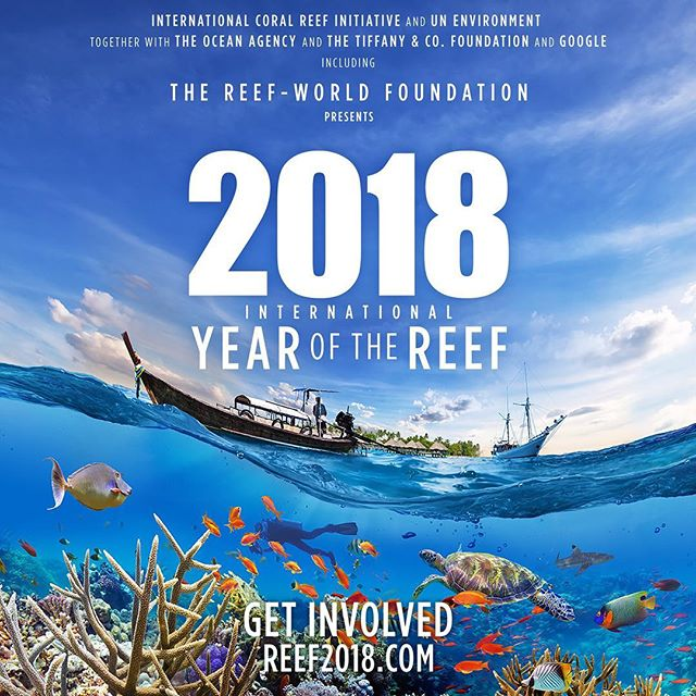 This #IYOR2018 be part of the #global movement toward #coralreef #protection! #wordofmouth, #raisingawareness, is something ALL of us can do and thanks to @theoceanagency you can easily access an image bank of #photographs and #posters. Access all of them and make your own on their website! . . #ocean #conservation #protectwhatyoulove #SaveOurReefs #coral #reef #biodiversity #balance