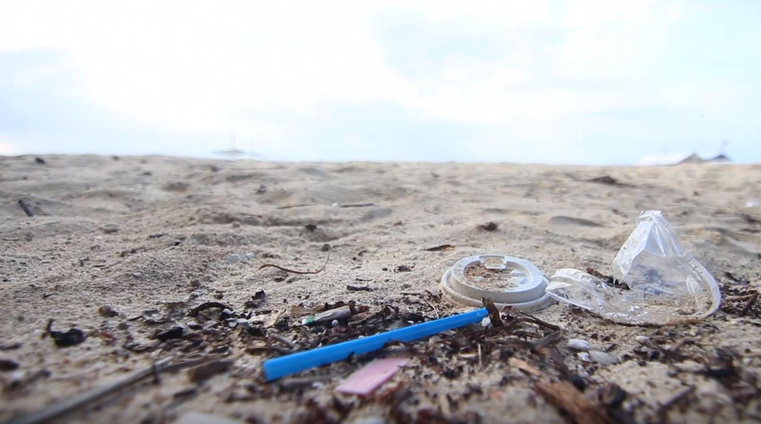 marine debris.JPG