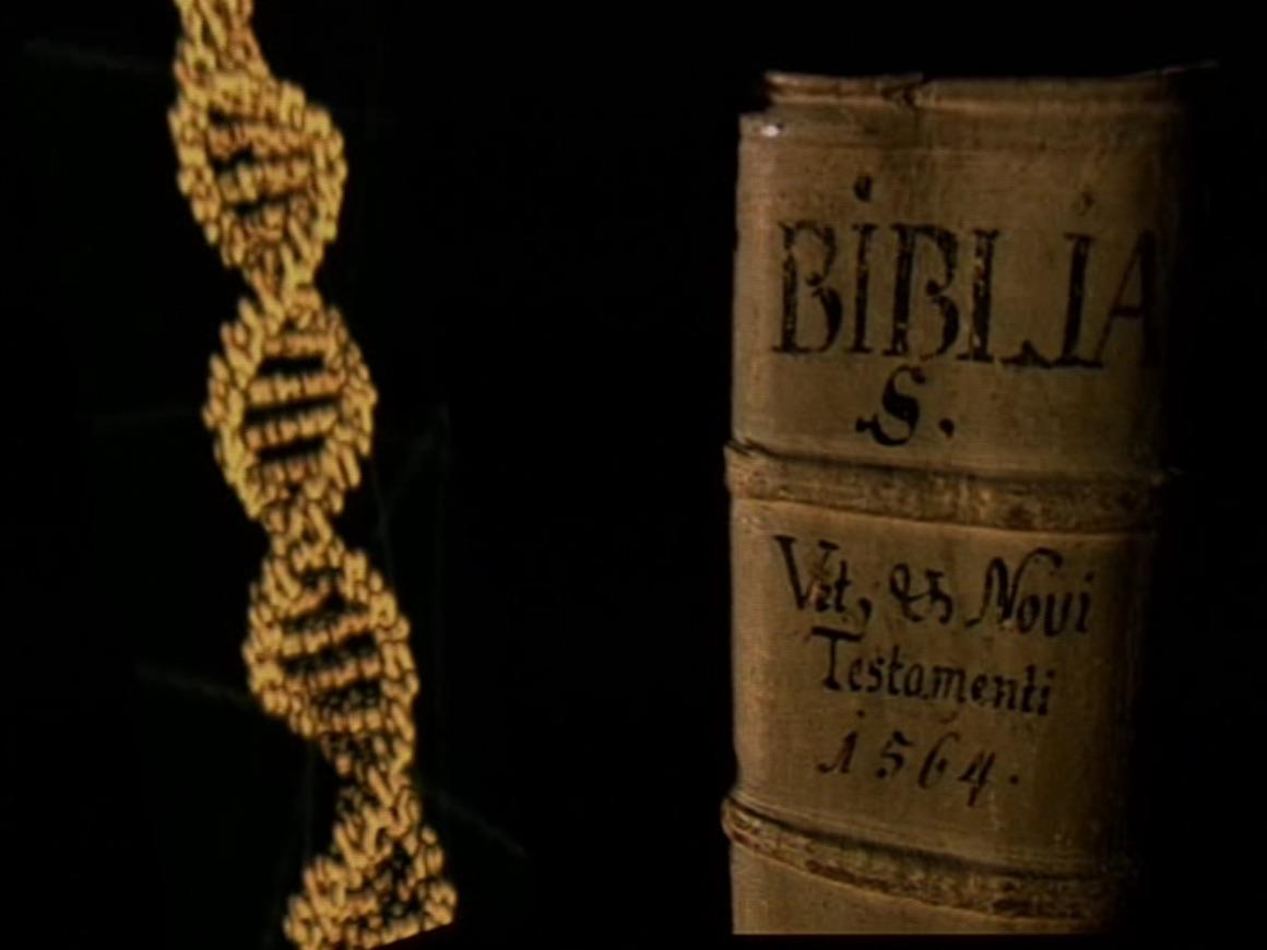 Bibel vs. DNA.jpg