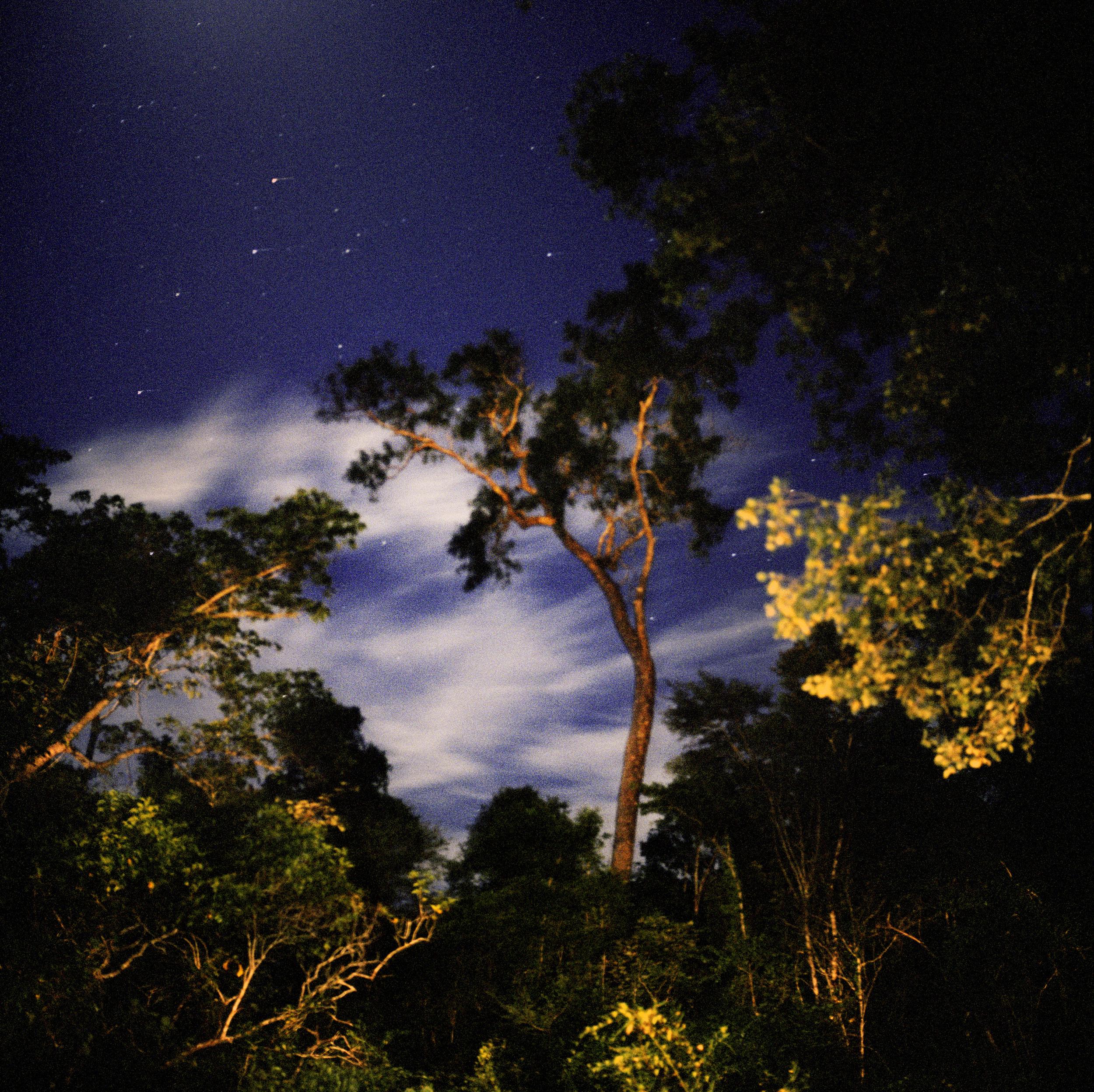 Madagascar, West