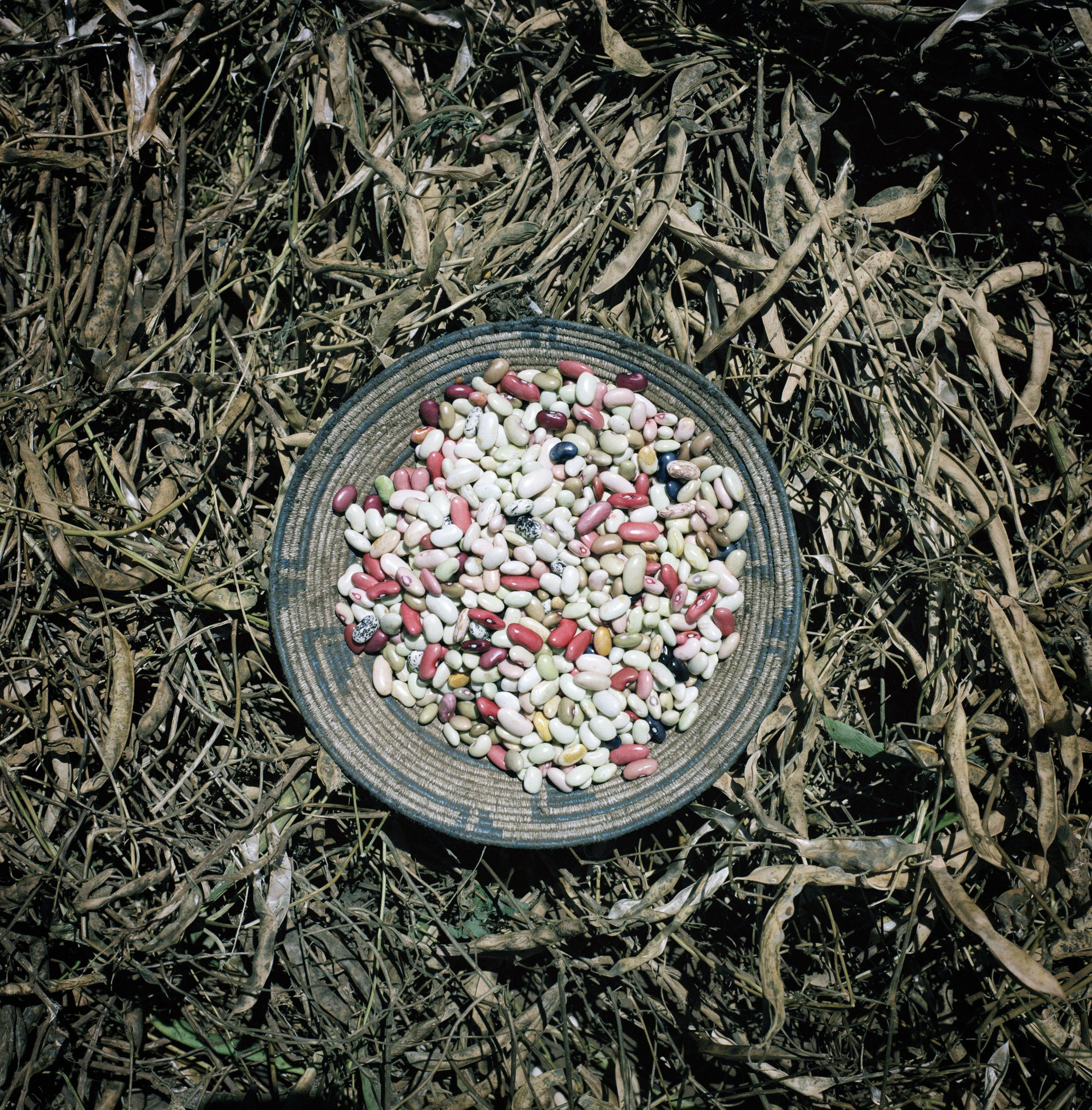 Burundi  A plate of dried pulses.