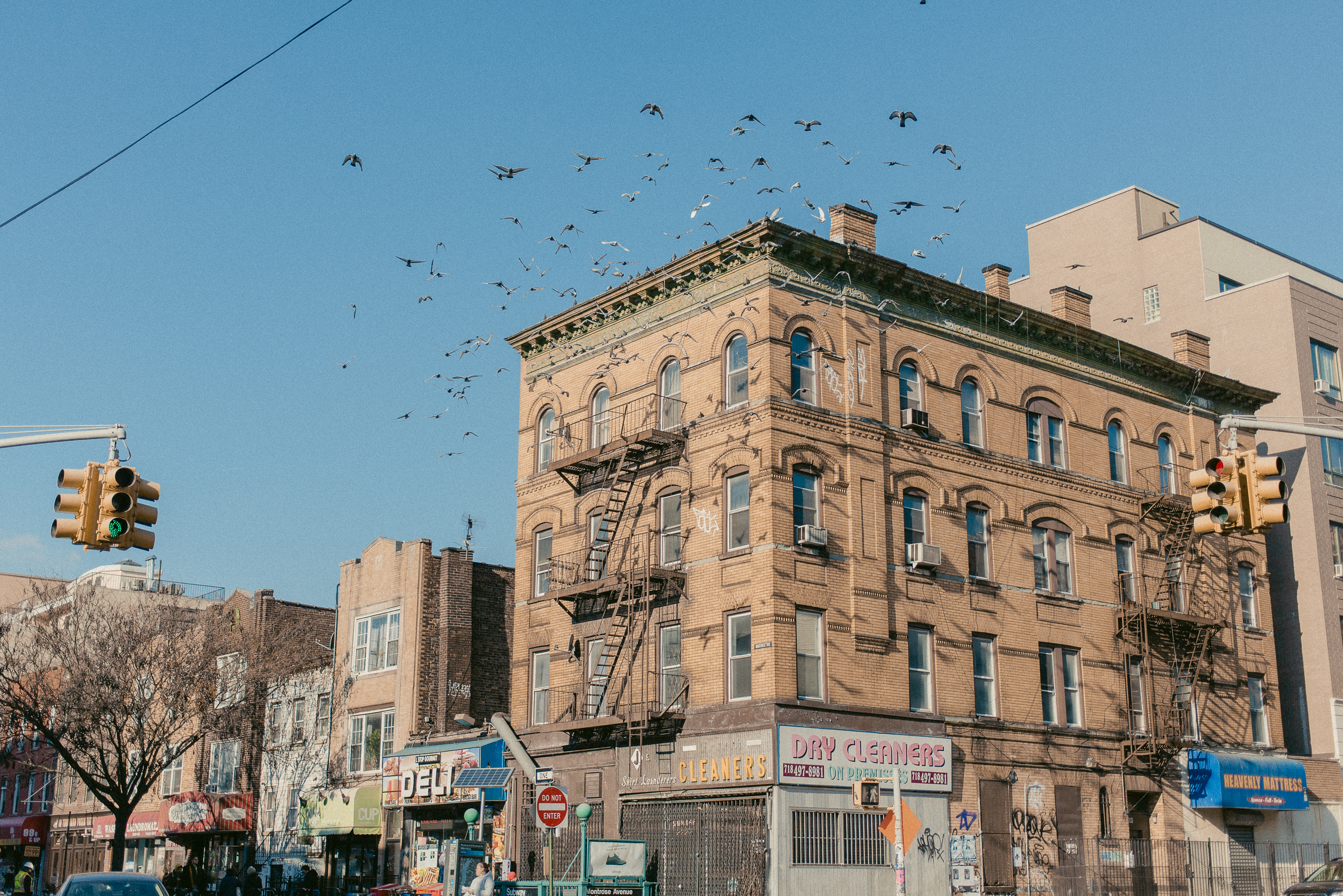 PLACES_NYC_101218_12.jpg