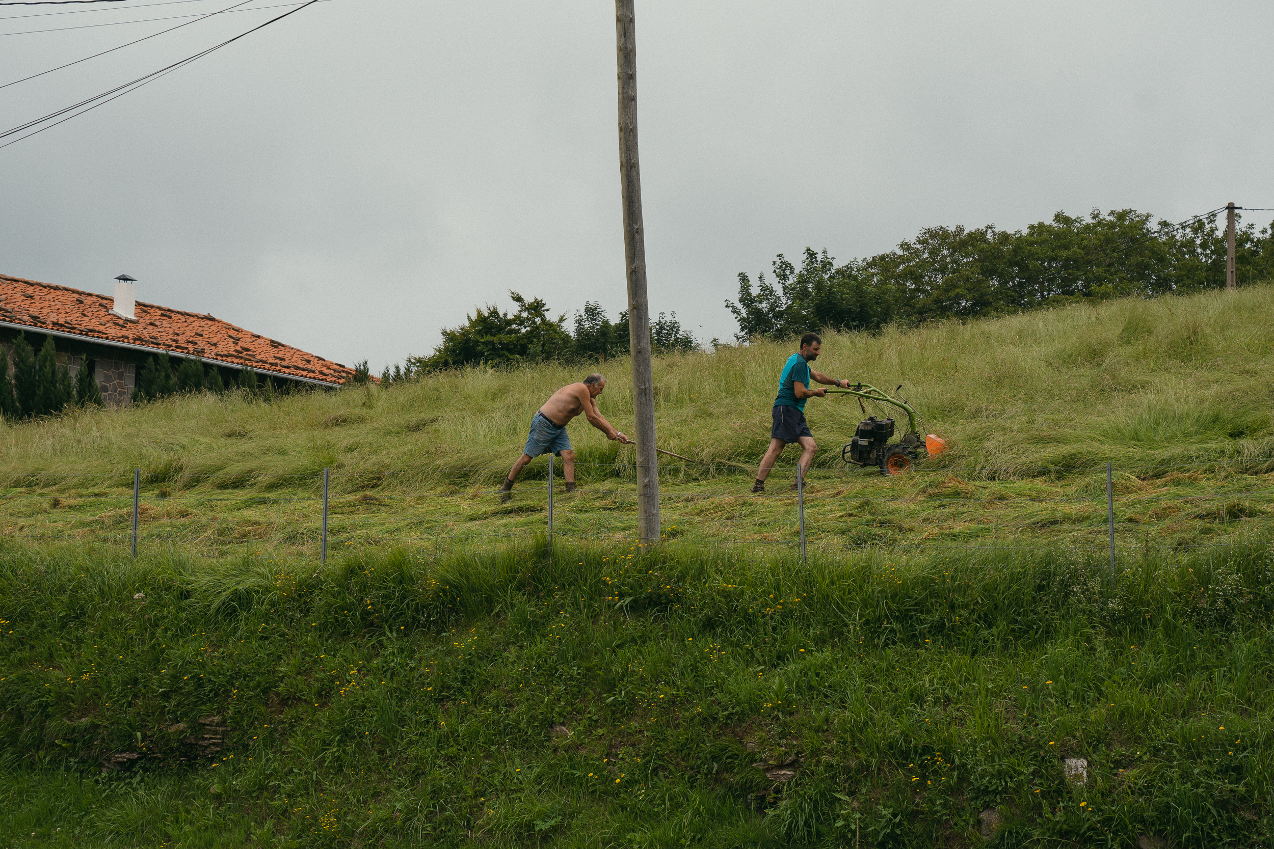 Two men cutting grass just outside of Aia.