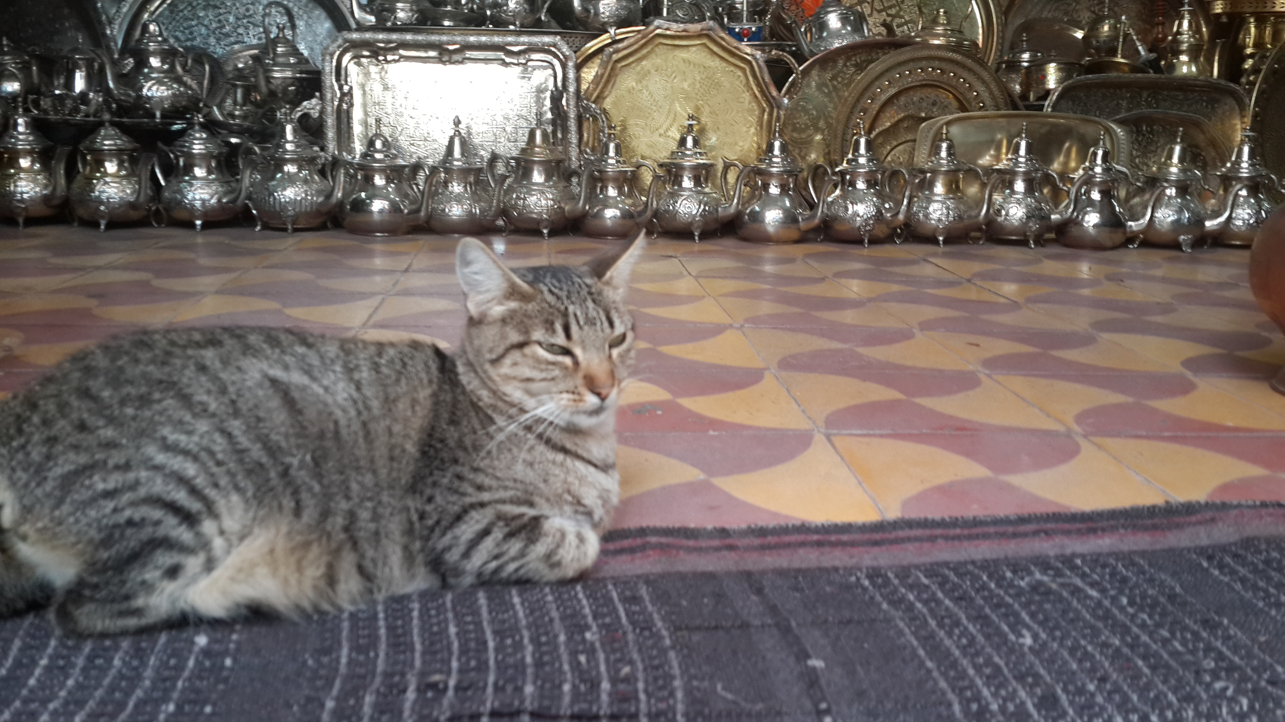 Mimi, the shop owner
