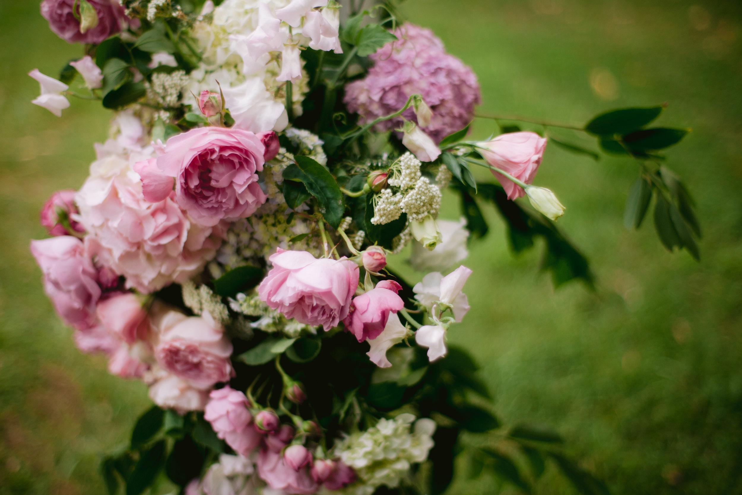 Roses arbour Sally Bay 005.jpg
