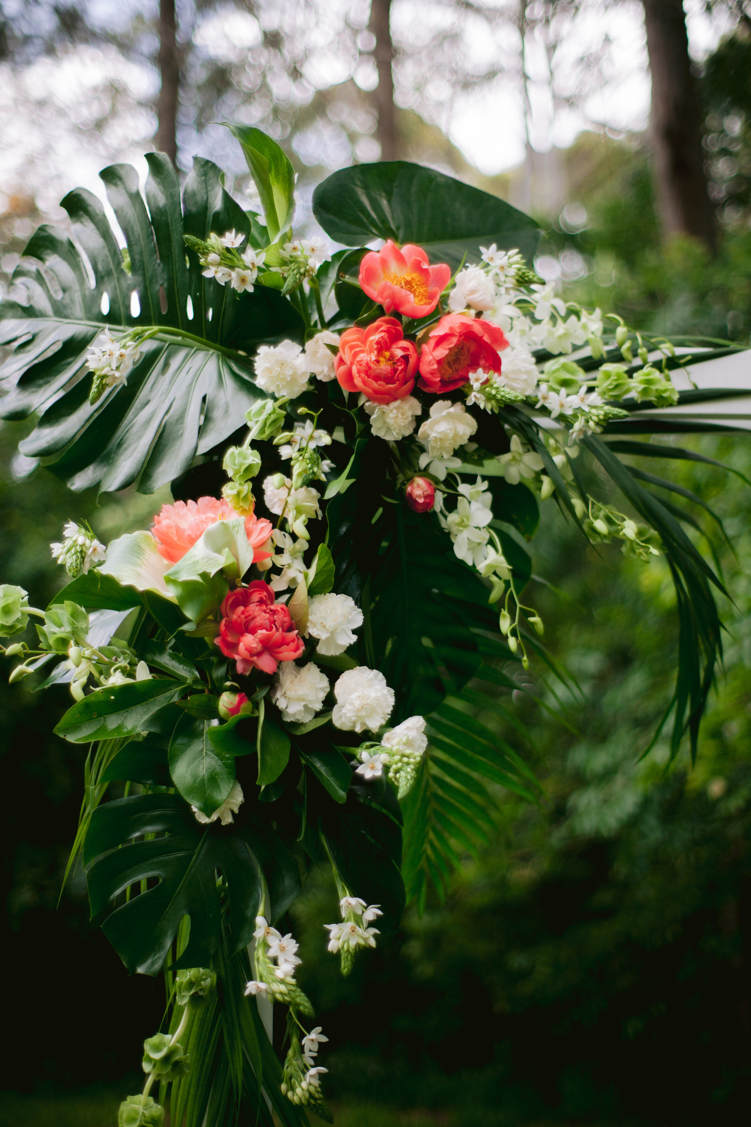 Tropical with peonies arbour Sally Bay 002.jpg