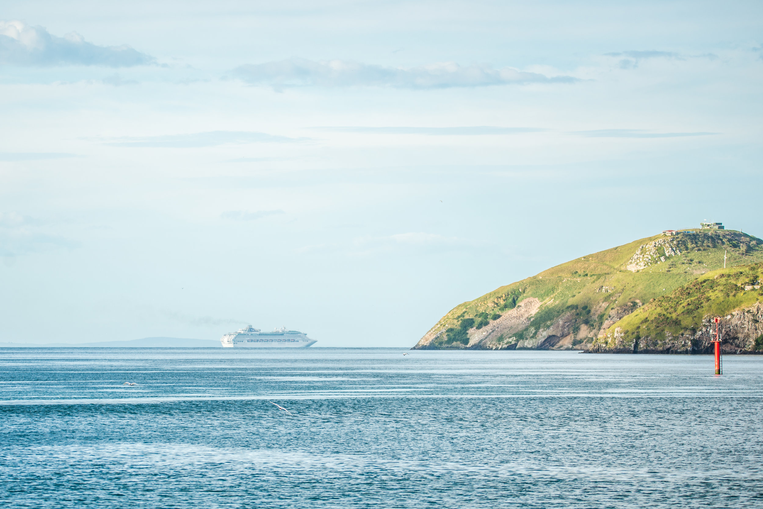 Taiaroa Head with Sea Princess-3742.jpg
