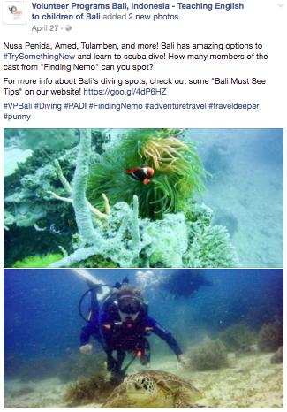 tsn diving.png