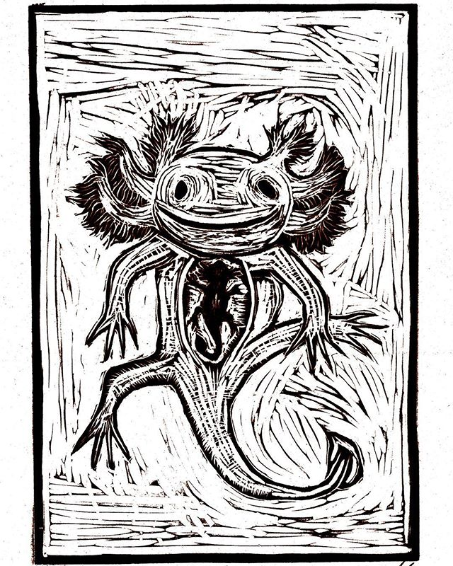"""About 6 years ago this time, the seeds for this Vicio original artwork were planted. Over a Spanglish napkin note at @laollaoax, we asked Oaxacan artist @migotas to express some of the ideas from a favorite short story by Julio Cortázar about the mysterious Mexican salamander. """"The axolotl spoke to me of the presence of a different life, of another way of seeing."""""""